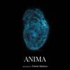 """Vernisaj """"Anima"""" de Denis Simion, la Galeria Galateca"""
