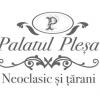 """Lansare proiect """"Palatul Pleşa – neoclasic şi ţărani"""""""