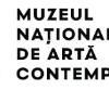 O nouă expoziție la Muzeul Național de Artă Contemporană