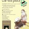 Scriitori cu pisici, eveniment dedicat iubitorilor de literatură și pisici, la Cărturești Verona
