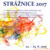 Orchestra Rapsodia Vâlceană și Ansamblul Folcloric Floricica din Costești, la Festivalul Internațional de Folclor Strážnice 2017, Republica Cehă