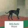 """Nou în Biblioteca Polirom: """"Sfîrşitul"""", de Atilla Bartis"""