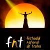 Se pun în vânzare biletele la FNT 2017