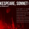 """""""Shakespeare, Sonnet 66"""" – cel mai premiat spectacol al Teatrului Maghiar în 2017"""