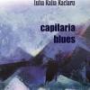"""""""Capilaria blues"""", de Iulia Ralia Raclaru, lansată la Iași"""