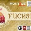 FUChSIADA – un nou concept de spectacol interactiv