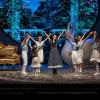 """Opera Comică pentru Copii suplimentează reprezentațiile musicalului ,,Sunetul muzicii"""""""