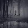 """Premiera scurtmetrajului """"Woods"""", la Cinema Elvire Popesco"""
