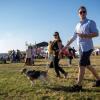 Peste 10.000 de oameni, la prima ediție a Festivalului Vinului Moldovei