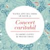 Concert caritabil pentru copiii de la Valea Plopului