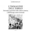 """Volumul """"Imaginea evreului în cultura română"""", de Andrei Oişteanu, tradus în limba italiană"""