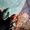 """Pleiada Boutique Hotel găzduiește expoziția """"Falstaff's Women"""" a artistului Leontin Păun"""