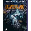 """Volumul """"Guantanamo"""", de Radu Sergiu Ruba, lansat în cadrul FIPB"""