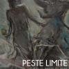 """Expoziție de pictură, """"Peste limite. Dintr-o parte în alta"""", la Galeria Romană"""