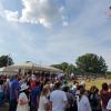 Spectacol ecvestru de top pentru 12.000 de spectatori la Karpatia Horse Show