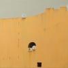 Detalii arhitecturale, plastice, politice și virtuale