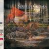 """Festivalul Internațional """"Serile de chitară"""" 2019 anunță următoarele două concerte"""