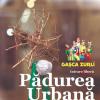 """În premieră națională, la Timișoara este """"construită"""" o Pădure Urbană"""