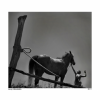 """""""Foto Magna""""- expoziție internațională de fotografie"""