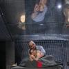 """""""Scene dintr-o căsnicie"""" și """"Prometeu înlănțuit"""", pe canalul YouTube al Teatrului Național Timișoara"""