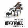 """Horia Mihail – Turneul """"Pianul Călător"""", ediţia a zecea, în aer liber"""