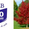 CLB plantează copaci pentru cea de-a patra generație de cititori