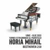 """Horia Mihail – Turneul """"Pianul Călător"""", ultimele două concerte în aer liber"""