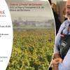 Atelier de prezentare și degustare de vinuri spaniole, la Institutul Cervantes din București