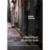 """O nouă apariție editorială: """"Pământule, să nu fii dur!"""", de Menno Wigman, traducere din neerlandeză de Doina Ioanid și Jan H. Mysjkin"""
