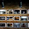 Salonul Internaţional de Artă Fotografică de la Sibiu