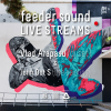 Conectează-te la următorul feeder sound LIVE STREAMS cu Vlad Arapasu (dj set) și John Dot S. (live painting)