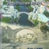 Revista de Antropologie Urbană și Revista de Cercetări Arheologice și Numismatice, recunoscute și clasificate de către Consiliului Național al Cercetării Ştiințifice