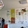 Clubul de lectură VILLEKULLA, un nou tărâm de descoperit la Opera Comică pentru Copii București