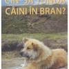 """""""Cin' să tundă câini în Bran?"""" – un nou roman de Stelian Țurlea"""