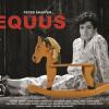 """""""Equus"""" de Peter Shaffer, în direcția de scenă a lui Victor Ioan Frunză, la Teatrul """"Stela Popescu"""""""